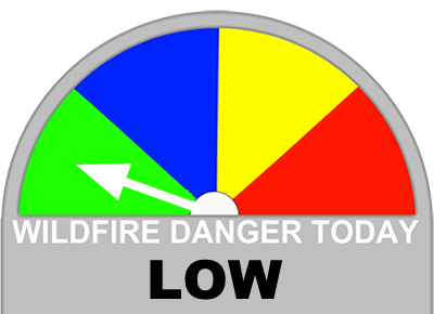 Large Icon Low Fire Danger